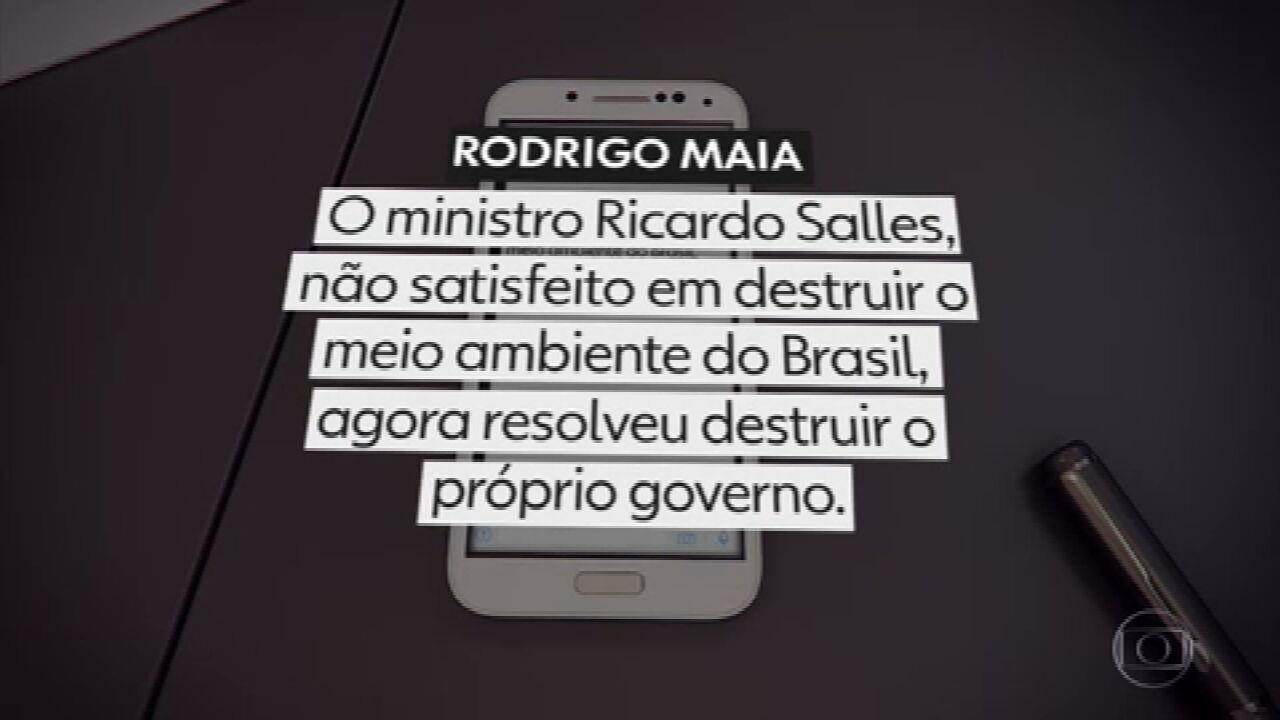 Presidente da Câmara diz que ministro Ricardo Salles destrói próprio governo