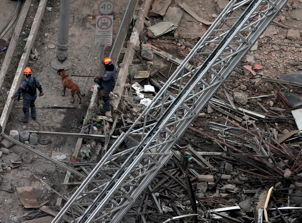 Bombeiros usam cão farejador para procurar vítimas sob os escombros (Foto: Leonardo Benassatto/Reuters)