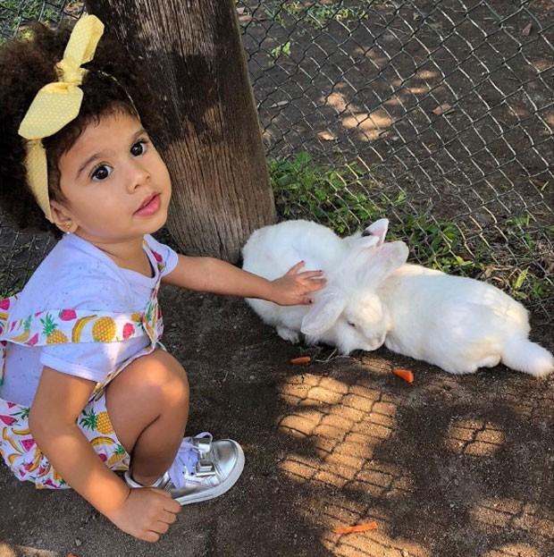 Beatriz brinca com coelho em foto postada pelo pai, o ator André Luiz Miranda (Foto: Reprodução / Instagram)