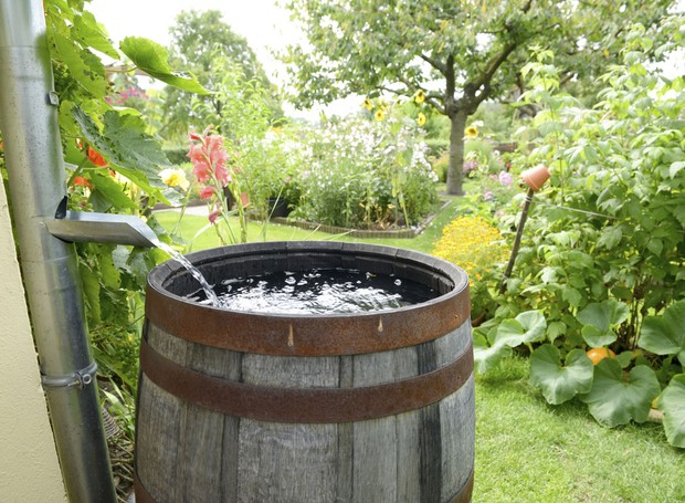 Captação de água da chuva (Foto: Thinkstock)