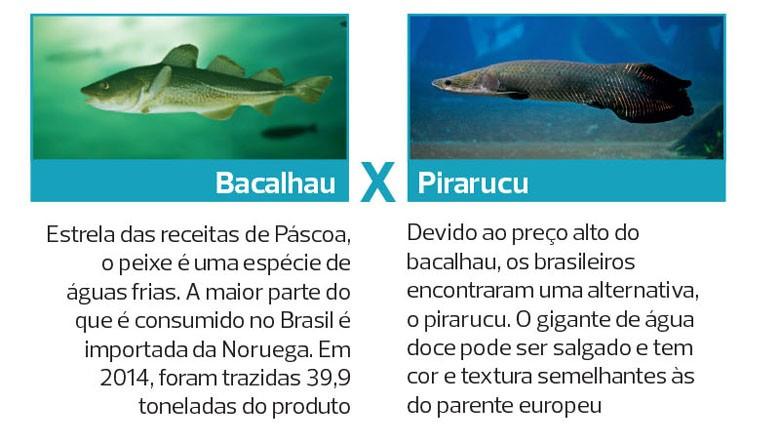 peixes-piscicultura-especies-criacao-cativeiro (Foto: Filipe Borin/Ed. Globo)