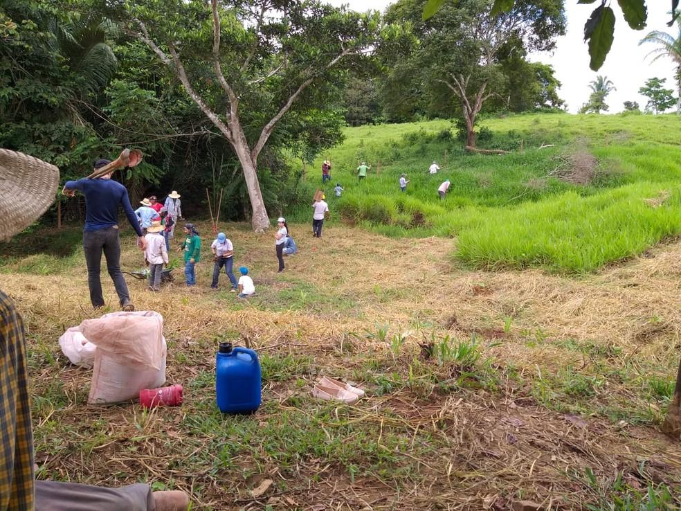 Grupo trabalha recuperando nascente em Jaru (RO). — Foto: Grupo Água Viva/Divulgação