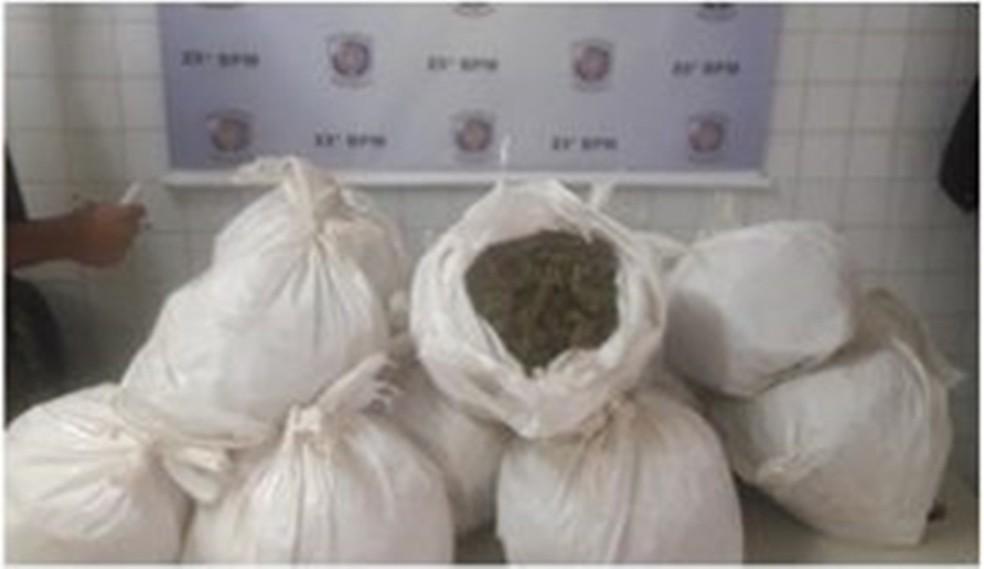 Droga apreendida em Afogados da Ingazeira (Foto: Polícia Militar/Divulgação)