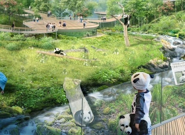 O projeto também tem o objetivo de educar os visitantes sobre a conservação do meio ambiente (Foto: China Discovery/ Reprodução)