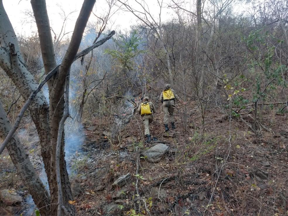 Principais focos do incêndio foram controlados, mas fogo não foi totalmente extinto — Foto: Divulgação/Corpo de Bombeiros