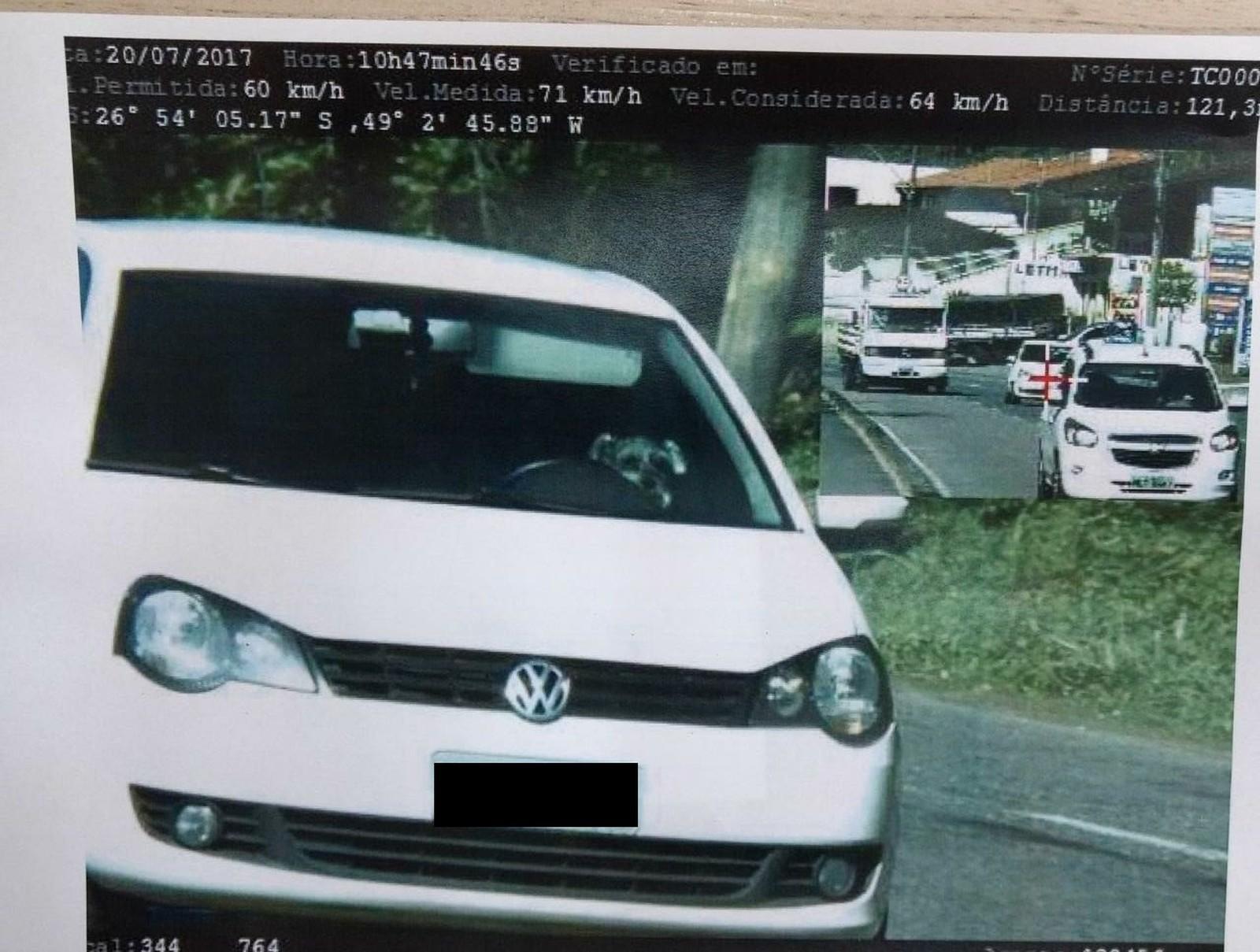 Radar flagra cachorro 'dirigindo' carro acima da velocidade em Santa Catarina