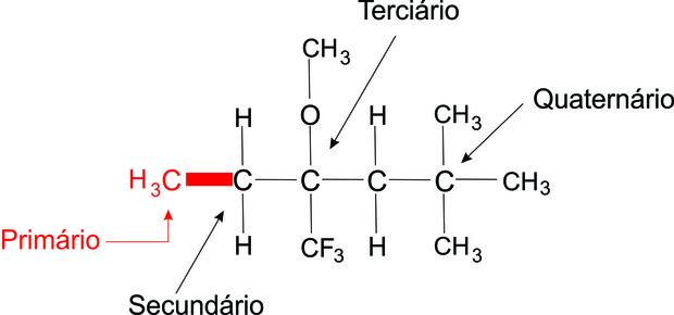 Image result for carbono primario
