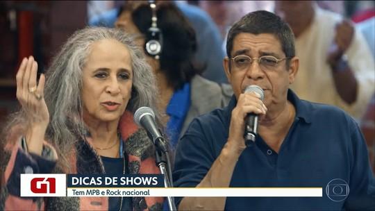 Maria Bethânia, Zeca Pagodinho e Humberto Gessinger fazem shows em SP; G1 comenta em VÍDEO