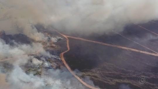 Incêndio atinge grande área de canavial em Ibitinga