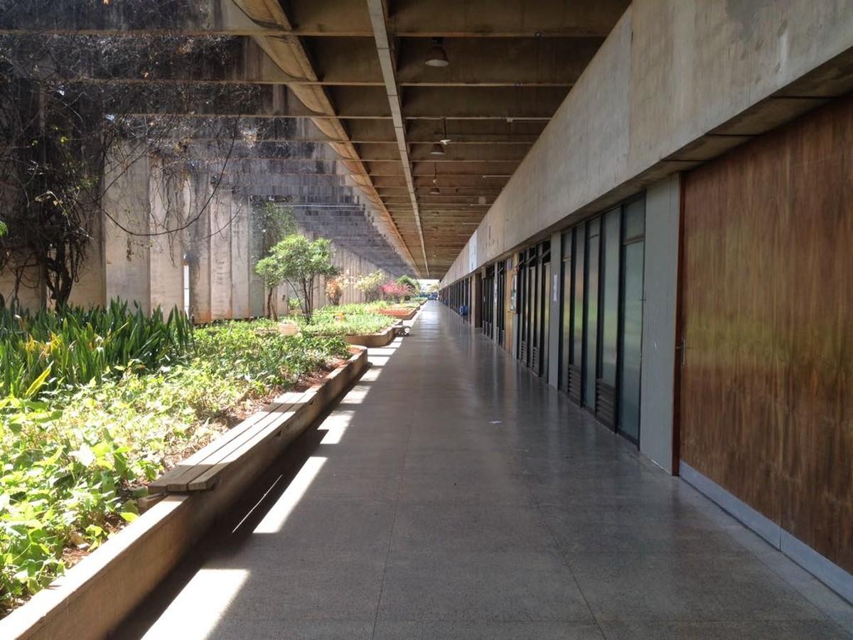 UnB abre 40 vagas para licenciatura em Libras; inscrição começa nesta segunda