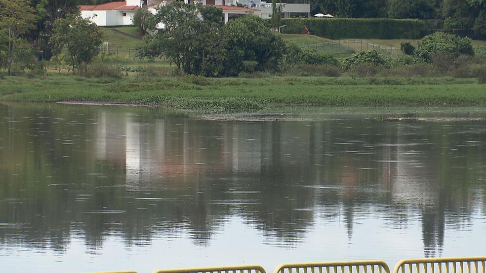 Área onde jacaré foi 'pescado', em Brasília (Foto: TV Globo/Reprodução)