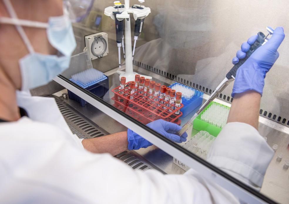 Pesquisadora de Oxford faz análise da vacina desenvolvida para o coronavírus, em 25 de junho — Foto: John Cairns, University of Oxford via AP