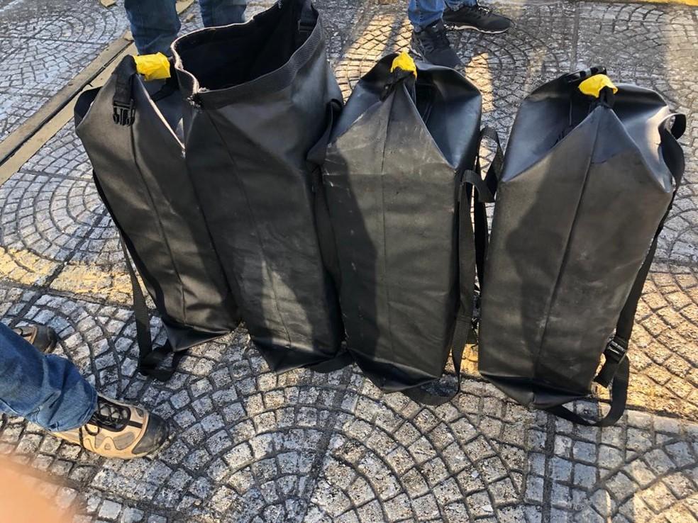 Droga estava escondida em sacolas impermeáreis — Foto: Polícia Federal/Divulgação