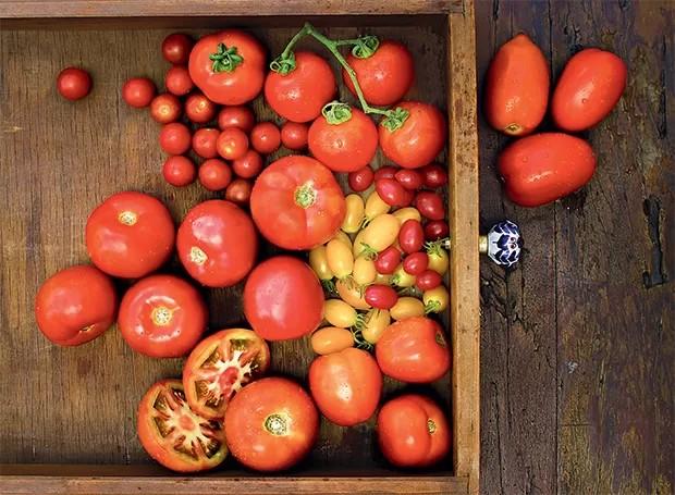 Tipos de tomate (Foto:  )