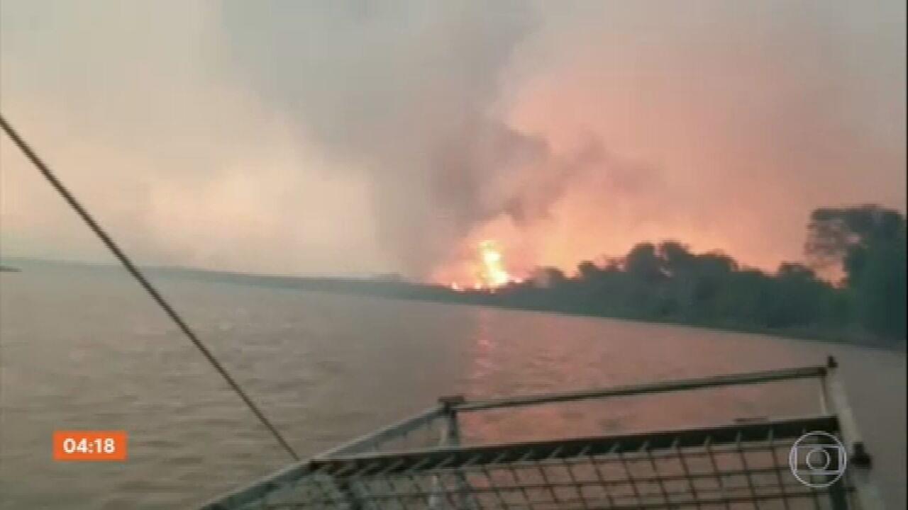 Incêndio volta a atingir o Pantanal do Mato Grosso do Sul