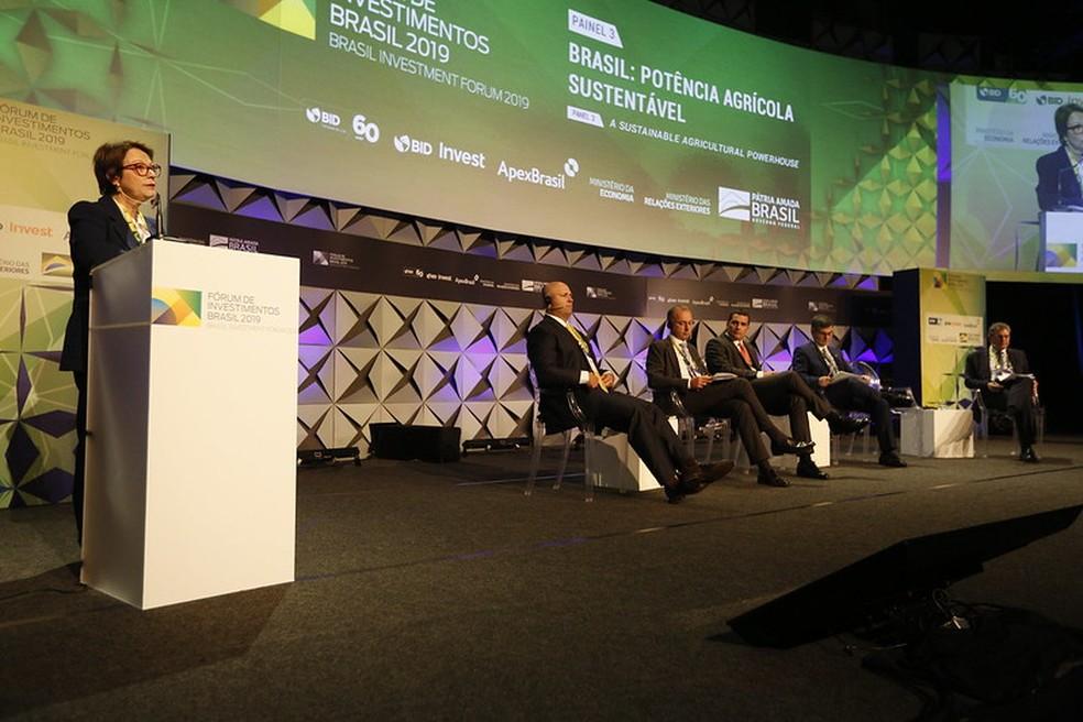 Resultado de imagem para Brasil precisa encontrar mercados além da China para soja, diz ministra Tereza Cristina