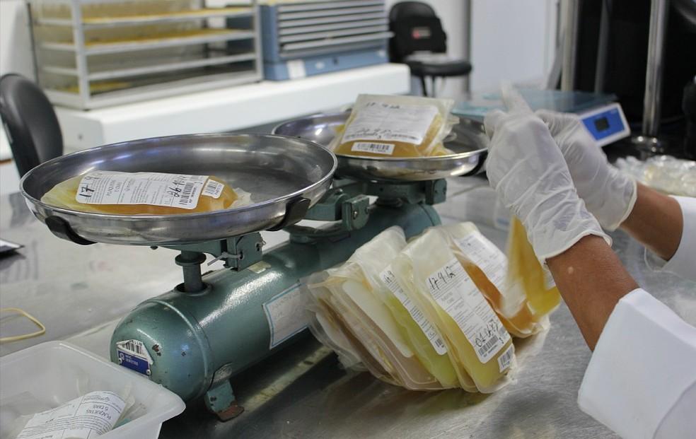 Segundo Ministério da Saúde, fábrica para fracionamento de plasma na Hemobrás também requer investimentos privados (Foto: Girlene Medeiros / G1 AM)