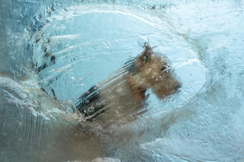 Pirata também foi congelado durante o naufrágio (Foto: Sergio Zalis/Globo)