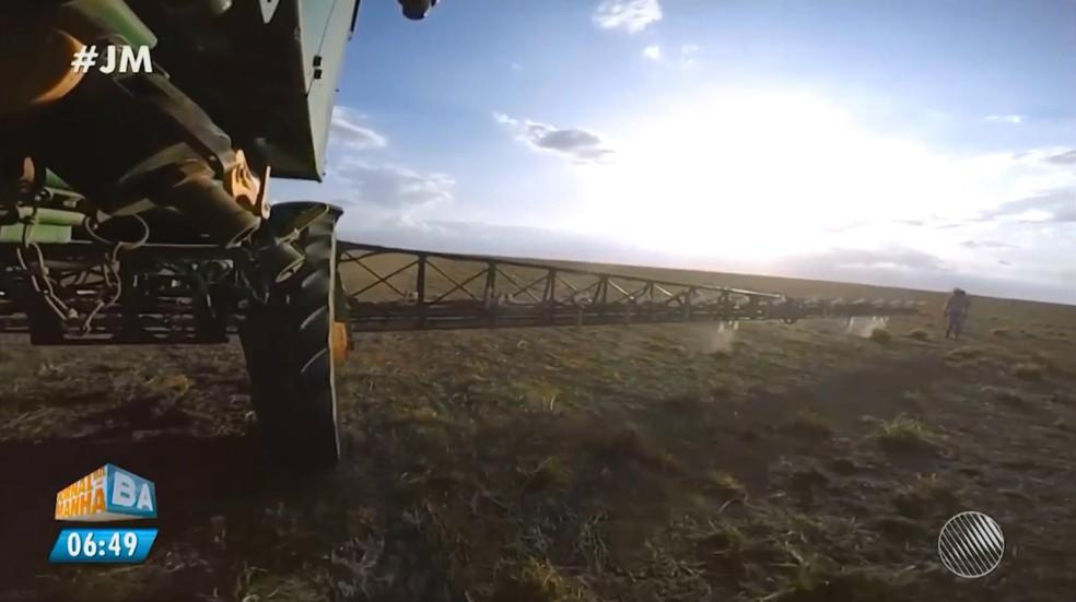 Máquina de irrigação possui sensores que detectam e regam apenas plantas vivas (Foto: Reprodução/TV Bahia)