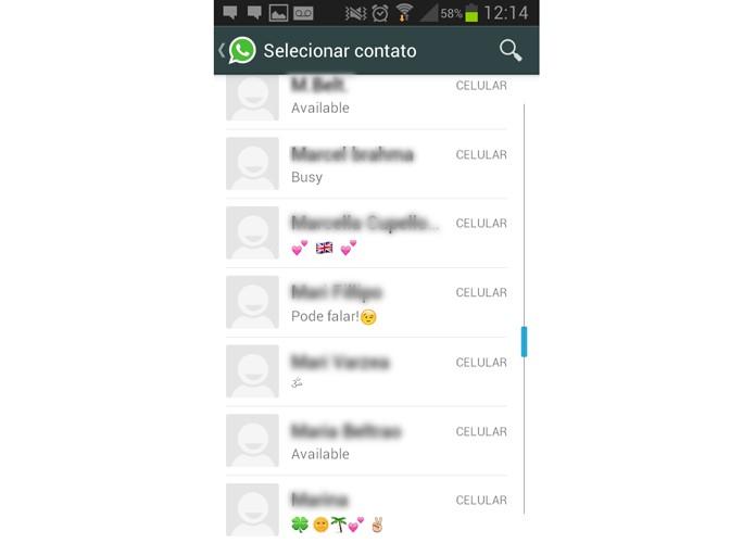 Tela com Bug do WhatsApp (Foto: Reprodução/ Luciana Maline)