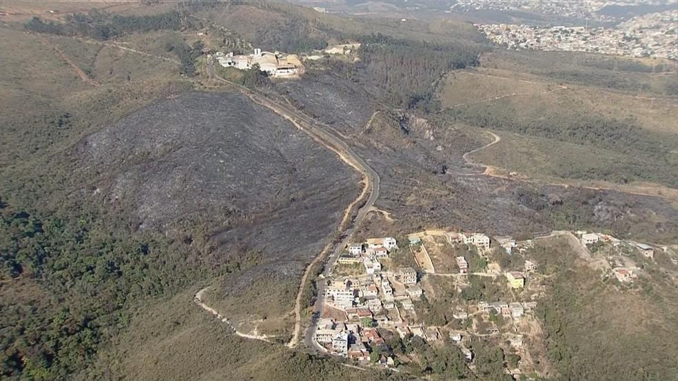 Parte do Parque da Serra do Rola Moça foi queimada — Foto: Reprodução/TV Globo