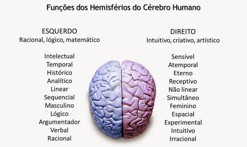 Imagem que mostra as funções do lado direito e do lado esquerdo do cérebro viralizou junto com a foto do tênis — Foto: Reprodução/Facebook