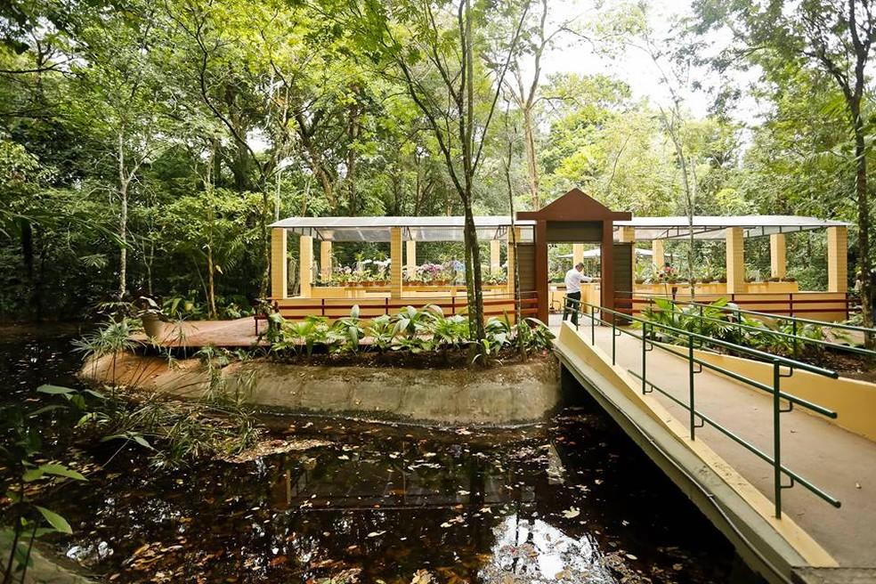 Jardim Botânico do Recife fica fechado na terça (31) e na quarta (1º) — Foto: Andréa Rêgo Barros/Prefeitura do Recife