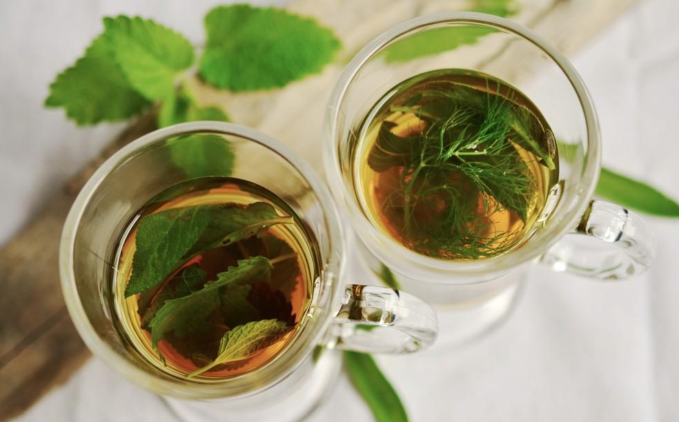 Chá de hortelã (Agatache rugosa) é bom para remediar uma ressaca  — Foto: Divulgação