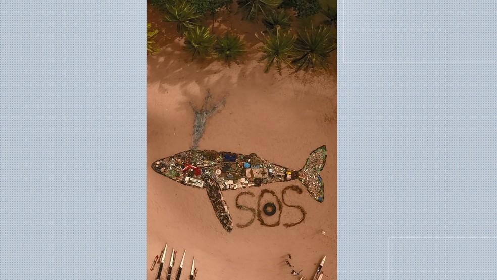 Obra de ar com lixo recolhido em praias de Vitória — Foto: Reprodução/Projeto Pegada