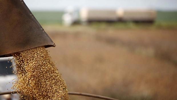 Agronegócio ; colheita de soja ; safra ; grãos ;  (Foto: Ernesto de Souza/Editora Globo)