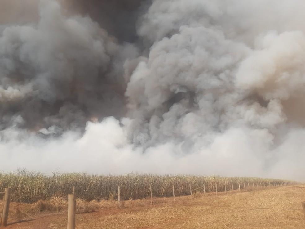 Fumaça se espalhou pelo canavial em Bocaina e encobriu parte da cidade  — Foto: Defesa Civil/ Divulgação