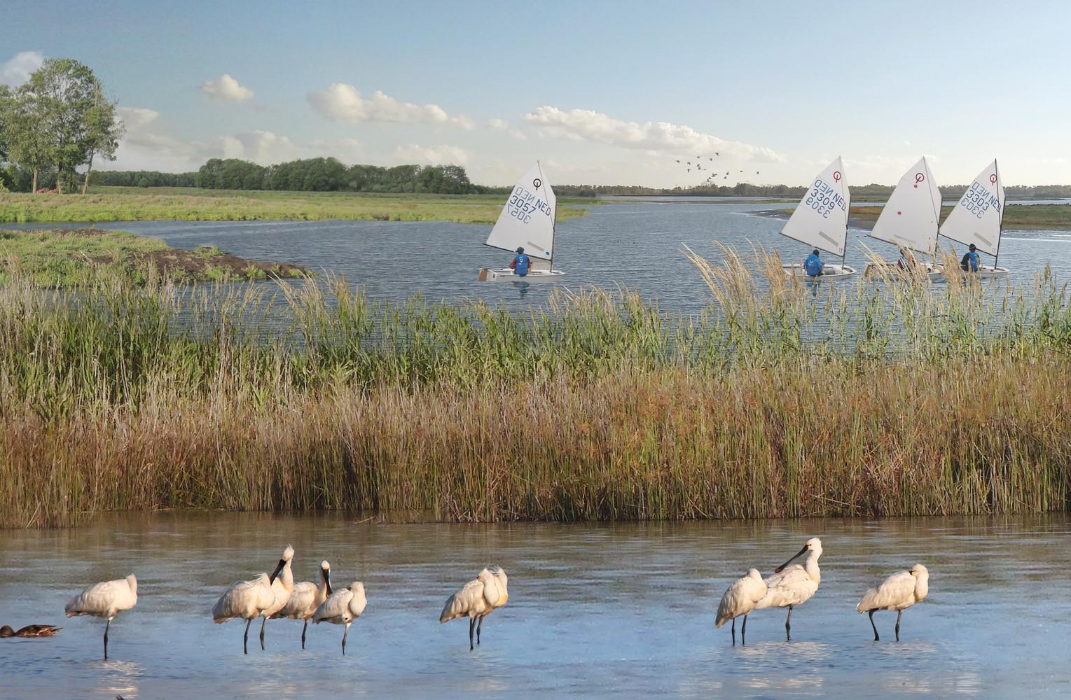 Maior parque natural do mundo feito pelo homem será na Holanda