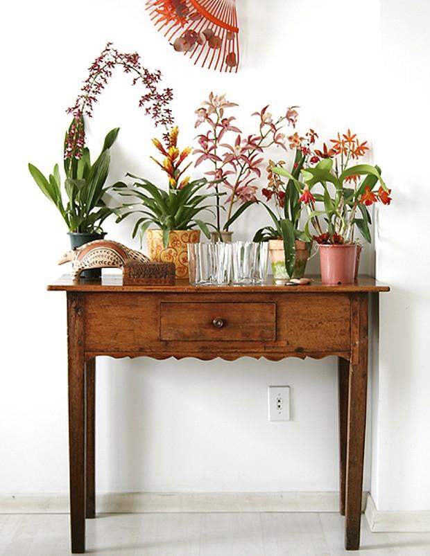 Até um pequeno aparador serve para expor a suas flores e orquídeas (Foto: Marcos Antonio)