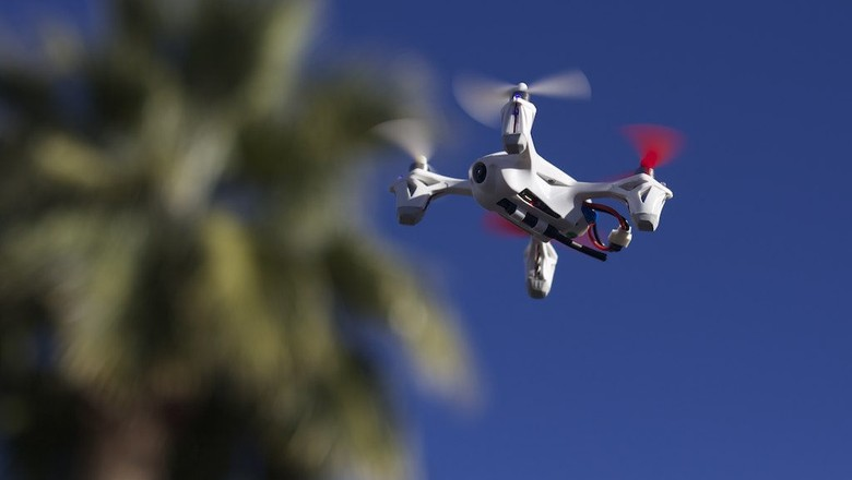 drone-tecnologia-contra-pragas-agricolas-campo (Foto: Andrew Turner/CCommons)