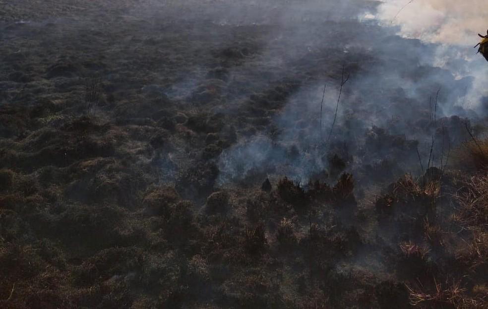 Incêndio está sendo mapeado pelos bombeiros e brigadistas na Serra da Canastra  — Foto: Corpo de Bombeiros/Divulgação