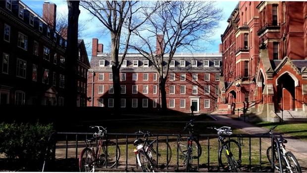 Universidade Harvard (Foto: Barbara Bigarelli)