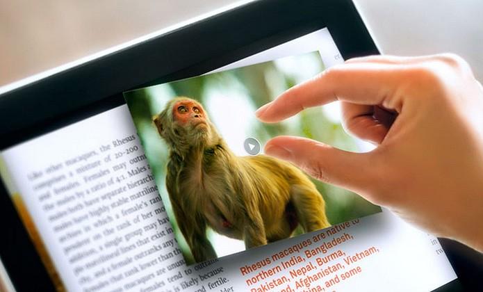 A produtora de e-books fundada por ex-funcionário da Apple virou parte do Facebook no meio de 2011 (Foto: Reprodução/Push Pop Press)