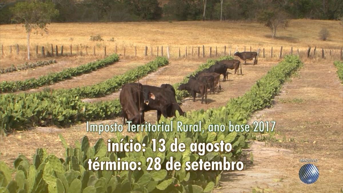 Resultado de imagem para PRAZO PARA ENTREGA DO IMPOSTO RURAL COMEÇA NESTA SEGUNDA (13)
