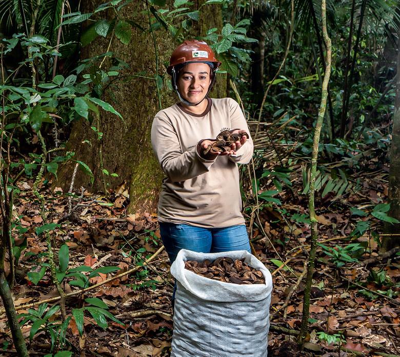 Amazônia - Veridiana Vieira, a Verê, líder dos coletores de castanhas-do-Brasil em Cotriguaçu (Foto: Fernando Martinho)