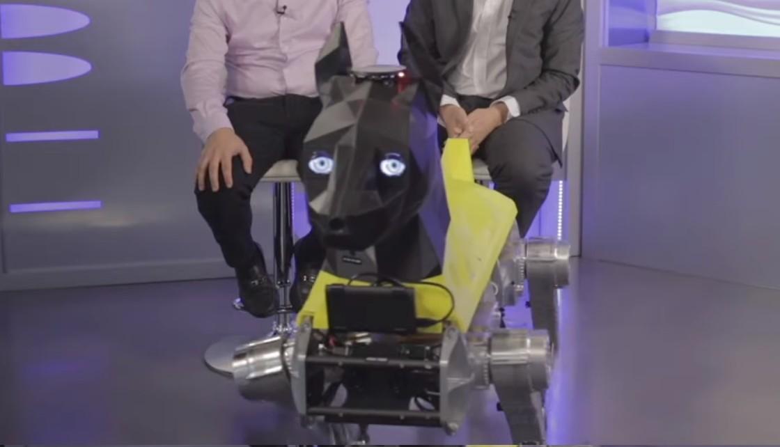 Robô pode ser treinado para executar tarefas, tal como um cão de verdade (Foto: Reprodução Youtube FAU)