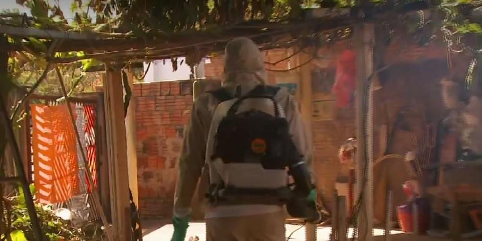 Nebulização em casas de Casa Branca contra o Aedes — Foto: Reprodução/EPTV