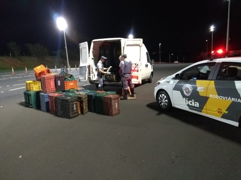 Droga e veículo foram apreendidos; motorista foi encaminhado para a penitenciária de Marília — Foto: Polícia Rodoviária/Divulgação