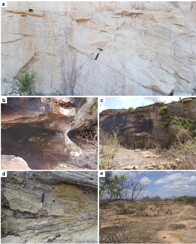 Pegadas de dinossauros foram identificadas pela primeira vez no Rio Grande do Norte RN  — Foto: Divulgação/UFRN