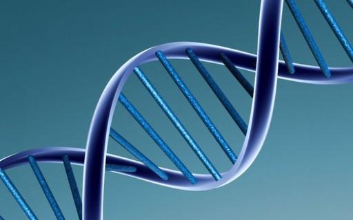 Estudo confirma a ligação entre genética e identidade de gênero