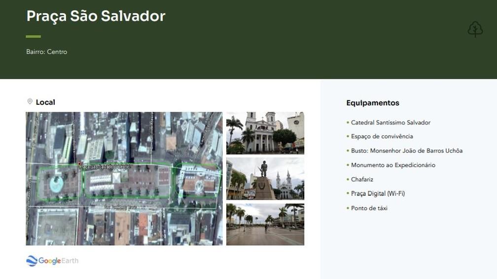 Guia publicado por pesquisadores da Uenf mostra também as praças usadas no estudo em Campos, no RJ — Foto: Reprodução/Guia de Vegetação de Praças Campos dos Goytacazes/ RJ- 2021