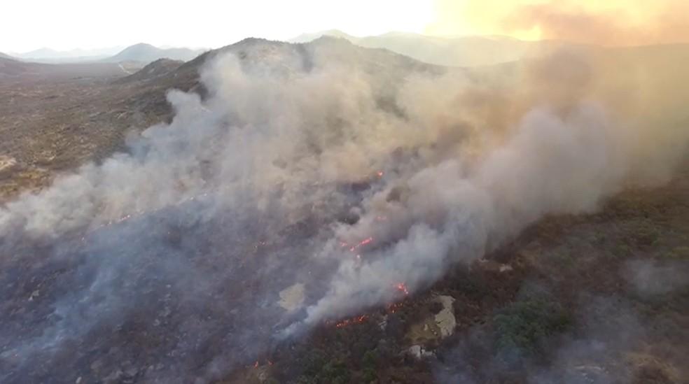 Incêndio florestal atinge região de Serra Negra do Norte, no Seridó potiguar — Foto: Reprodução