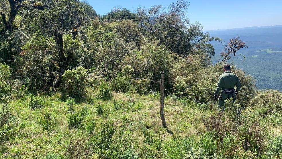Alpinistas estavam em uma área de difícil acesso — Foto: Polícia Militar/Divulgação