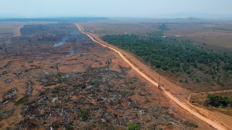 Fogo, queimada, Amazônia, Altamira, floresta, Pará, BR-163, rodovia, desmatamento  (Foto: Emiliano Capozoli/Ed.Globo)