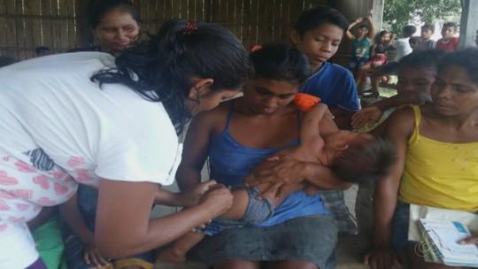 Mais de 20 macacos são encontrados mortos em Novo Aripuanã, no AM