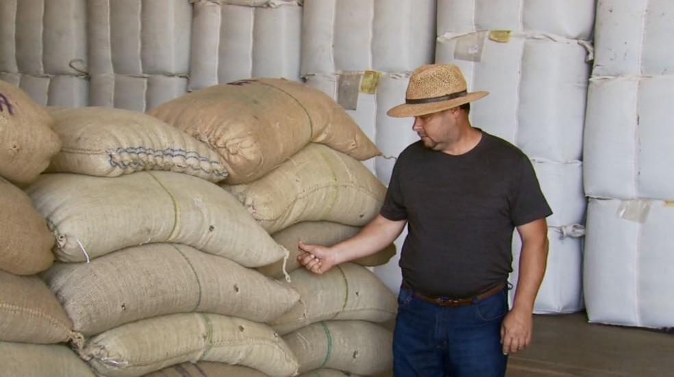 Estoque de produtores deixam estoque de café em cooperativas no Sul de Minas (Foto: Reprodução/EPTV)